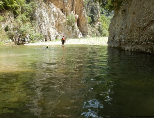 WALKING WATER TOUR GOLE DEL PLATANO