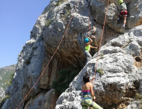 ARRAMPICATA DAY